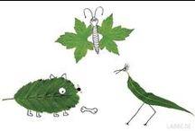 Blätter - Leaves / Blätter haben durch ihre unterschiedlichen Formen und Farben eine ganz eigene Faszination. Schon in der Steinzeit haben Kinder mit Blättern gespielt. Vielleicht haben sie sie  nach Farben sortiert - oder nach Größen, oder nach Formen... genau das, was Kinder auch heute gerne im Herbst machen.
