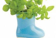 Organic Gardening // Biokert