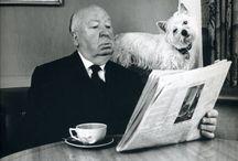 Dogs & Celebs