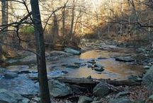 On the Trail: DC / Information about trails in the D.C. metro area.