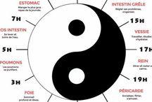 Médecine Chinoise / La médecine ancestrale