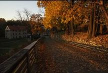 Hotel Bethlehem in Autumn  / The Downtown sees a lot of foliage during this time of year. You can step right outside our hotel doors, and it won't take a long stroll for you to see the beauty that autumn brings us.