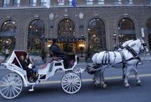 """The Christmas City & Hotel Bethlehem's Winter Holiday Season / We are right in the downtown historic district of Bethlehem, PA-- better known as The Christmas City. We have the """"Christmas City Village,"""" where the historic shops put out crafts and huts on the sidewalk while selling hot chocolate and cider. The visitor's center organizes horse and carriage rides, along with tours. And of course, we are completely decorated. It's the most beautiful time to visit Hotel Bethlehem."""