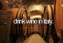 Vino....Vino....Cin....Cin! / Italian wines are the best! / by DIVINA SEI !!!