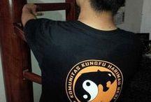 Wing Chun Indonesia / Perguruan Kungfu Wingchun Harimau Besi Indonesia, 60 Cabang di 8 Provinsi se Indonesia, berdiri sejak 2005.