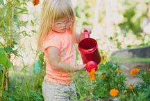 """Gardening / """"Interacting with natural vegetation helps children connect with the wonders of nature, learn about natural systems and seasons, and develop keen observation skills."""" --Insights from the Learning With Nature Idea Book"""