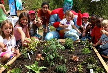 Funding Opportunities / A list of organizations who may contribute to your new or growing Nature Explore Classrooms.
