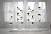 Hydroponic Vertical Garden / Hydroponic Vertical Garden
