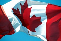 The Best Canadian Design Ever. / Brand Canada, material culture, and global identity.