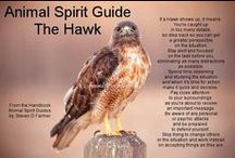spirit~life~journey~message~animal totem / by Tina Hall