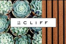 15 Cliff / An existing building in New York's Financial District was the setting for 15 Cliff, a new rental offering catering to professional Millennials. The Seventh Art was asked to create a brand strategy and campaign that would position the project as an exciting place to live.