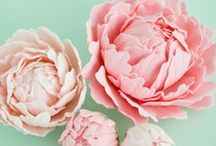 ❉ Lovely Peonies ❉