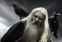Raven and Odin / Huginn and Muninn