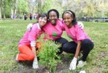 Arbor Day / Inspiring people to plant, nurture and celebrate trees. Nature Explore is a collaborative program of the Arbor Day Foundation and Dimensions Educational Research Foundation.