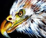 AMERICAN EAGLES / It has come to our attention so countries do not like eagles and will ban painting videos and paintings of eagles on G.P. So friends, lets make an Eagle Board, and I will pin photos, paintings and all eagle art on this board. So there.!!!