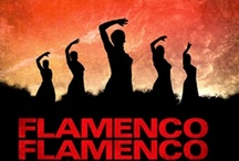 Flamenco  / I love Flamenco. I used to study it & performed a few times only but because I have seizures I had to stop. My mother also done flamenco dancing when she was young & I have her picture framed. PLEASE DON'T PIN MORE THAN 20 pins at a time.