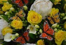 Sympathy Flowers / Sympathy Flowers