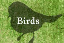 Gumpaste-Fondant Birds / A Collection of Assorted Gumpaste-Fondant of Birds