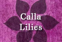 Gumpaste-Fondant Calla Lilies & Arum Lilies / A Collection of Gumpaste-Fondant Calla Lily & Arum Lily Flowers