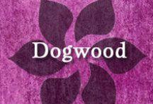Gumpaste-Fondant Dogwoods / A Collection of Gumpaste-Fondant Dogwood Flowers