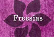 Gumpaste-Fondant Freesias / A Collection of Gumpaste-Fondant Freesia Flowers
