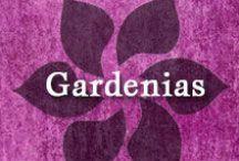 Gumpaste-Fondant Gardenias / A Collection of Gumpaste-Fondant Gardenia Flowers