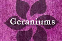 Gumpaste-Fondant Geraniums & Cranesbill / A Collection of Gumpaste-Fondant Geranium Flowers
