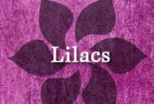 Gumpaste-Fondant Lilacs / A Collection of Gumpaste-Fondant Lilac Flowers