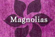Gumpaste-Fondant Magnolias / A Collection of Gumpaste-Fondant Magnolia Flowers