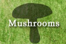 Gumpaste-Fondant Mushrooms & Toadstools / A Collection of Gumpaste-Fondant Mushrooms & Toadstools