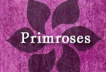 Gumpaste-Fondant Primroses / A Collection of Gumpaste-Fondant Primrose Flowers