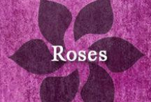 Gumpaste-Fondant Roses / A Collection of Gumpaste-Fondant Rose Flowers