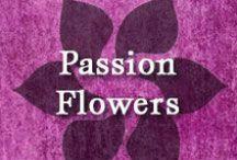 Gumpaste-Fondant Passion Flowers / A Collection of Assorted Gumpaste-Fondant Passion Flowers