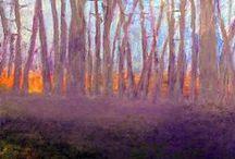 Inspiring - Wolf Kahn / by Sharon Rains