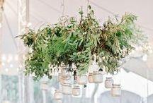 Wedding : Garden