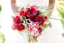 Wedding : Radiant Red