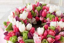 Tulips / Kukat - floristinen sidonta
