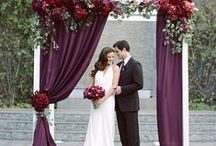 Wedding : Magnificent Marsala