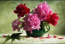 Цветы-Букеты / доска с цветами и букетами)))