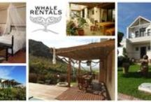 Accomodation / Guest Houses, B&B's, Backpackers, Hotels, Holiday rentals and more in Hermanus and surrounds.