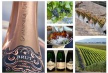 Wine & Olives / Wine and Olive Producers in and around Hermanus