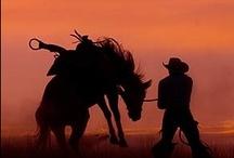 Cowboys II / by Madeline Evans