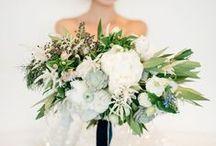Blooms & Bouquets