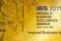 History of IBIS