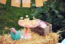 Bauernhof Party / Farm Party