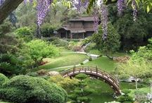 Inspiring Gardens / Beauty, sanctuary, calmness in your own backyard — art in nature that feeds your soul.