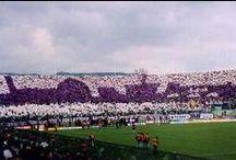 Fiorentina: La Squadra, la bistecca e la schiacciata / 3 cose belle e buone!!!
