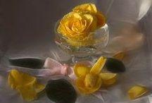 Bouquets,flavours