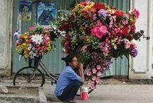 Photos men and flowers / Des hommes et des fleurs