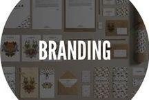 Branding. ITALIANBARK / BRanding design selection